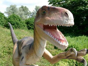 442605_velociraptor_in_park