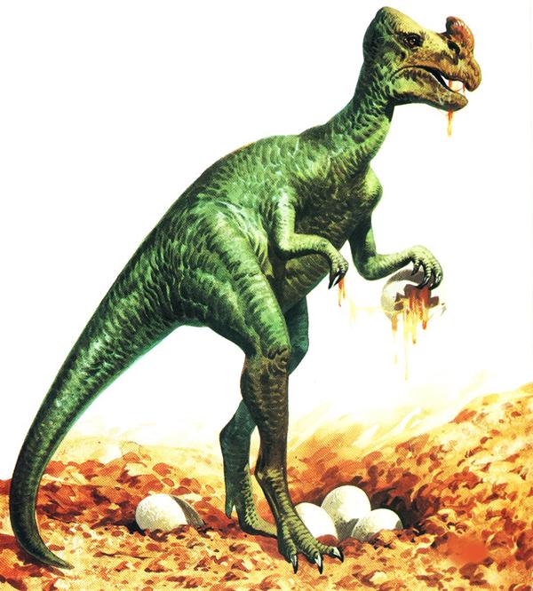oviraptor04bis