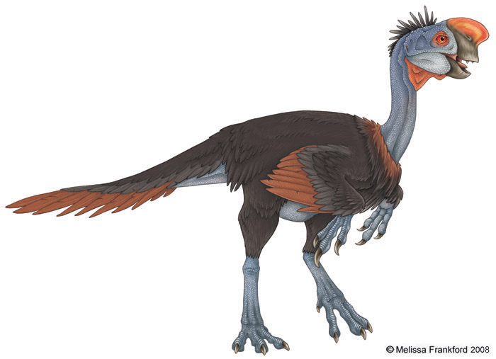 Oviraptor_Philoceratops_by_mmfrankford